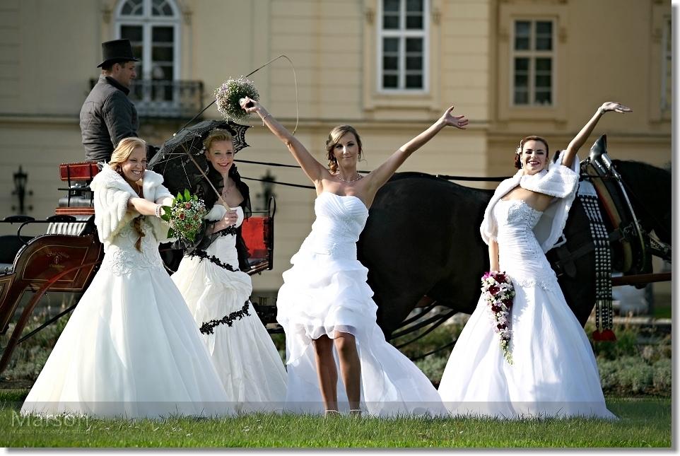 Reportáž Svatba na Zámku Napajedla 038