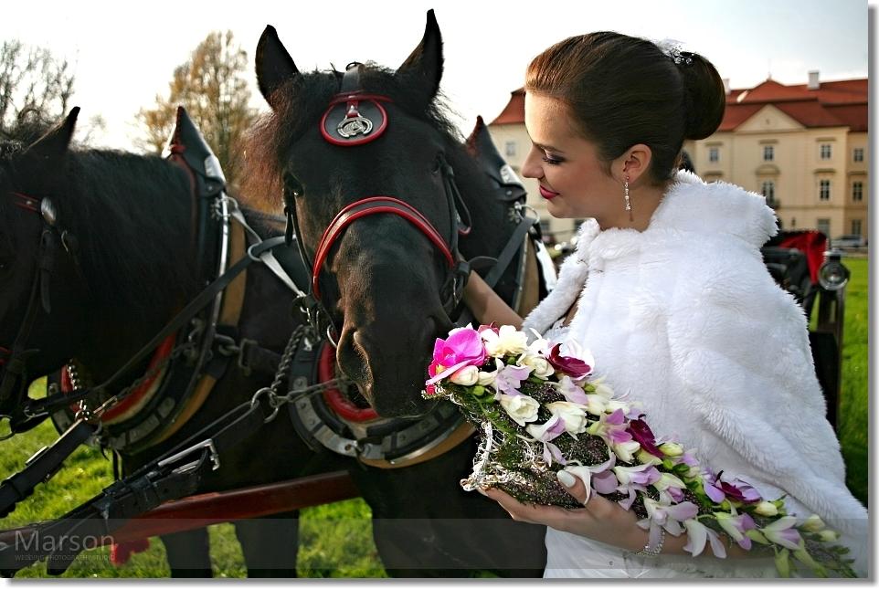Reportáž Svatba na Zámku Napajedla 041