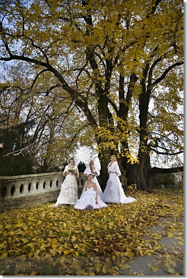 Reportáž Svatba na Zámku Napajedla 064