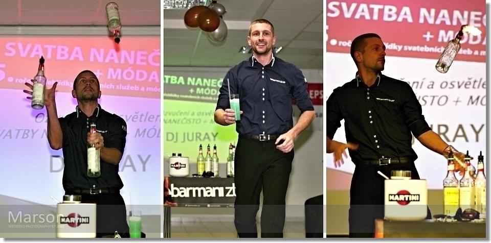 Report 5.Ročník Svatba nanečisto + Móda 2014_031 photo-marson