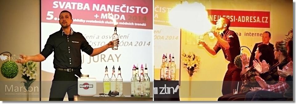 Report 5.Ročník Svatba nanečisto + Móda 2014_032 photo-marson